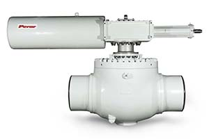 Top Entry Trunnion Mounted Ball Valve 01