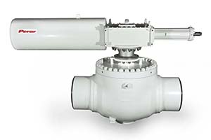 Top Entry Trunnion Mounted Ball Valve 02